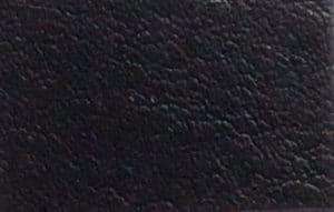 S110 Black
