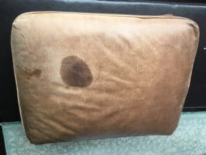 oil stained cushion